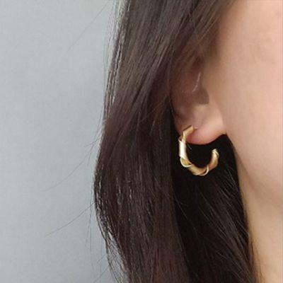 Spiral Twisted Hoop Earrings