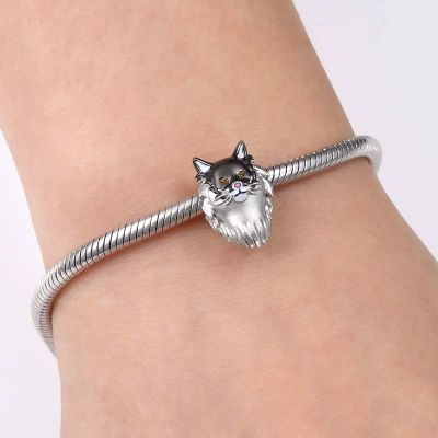 Maine Coon Cat Charm