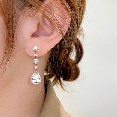 Gorgeous Dangle Earrings